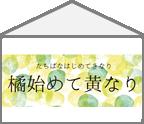 【ハコ暦】あミカンからはじまるおしゃれの話