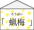 【ハコ暦】はっとする、冬空に彩りを添える服。
