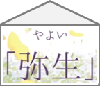 【ハコ暦】今日から3月!いよいよ春がやってきます。