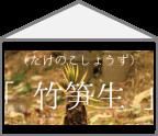【ハコ暦】ぐうたら派にもこだわり派にも良い知らせ!