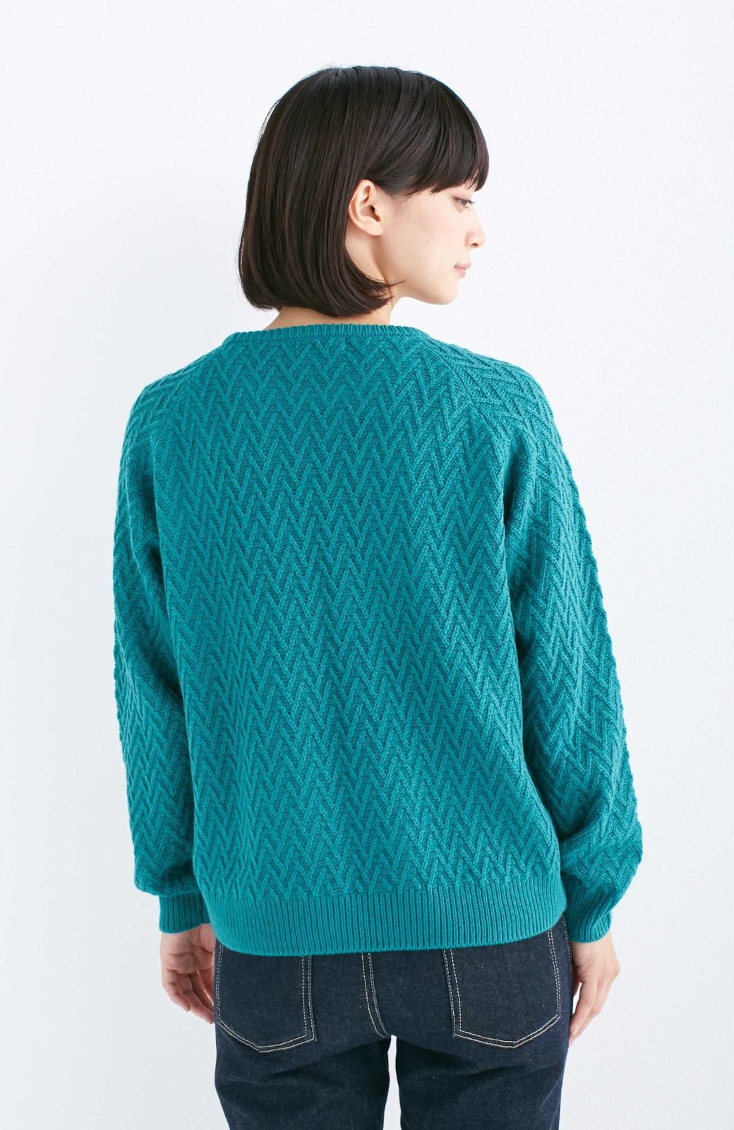 nusy お家で洗えてきれいがつづく V柄編みクルーネックニット <グリーン>の商品写真10