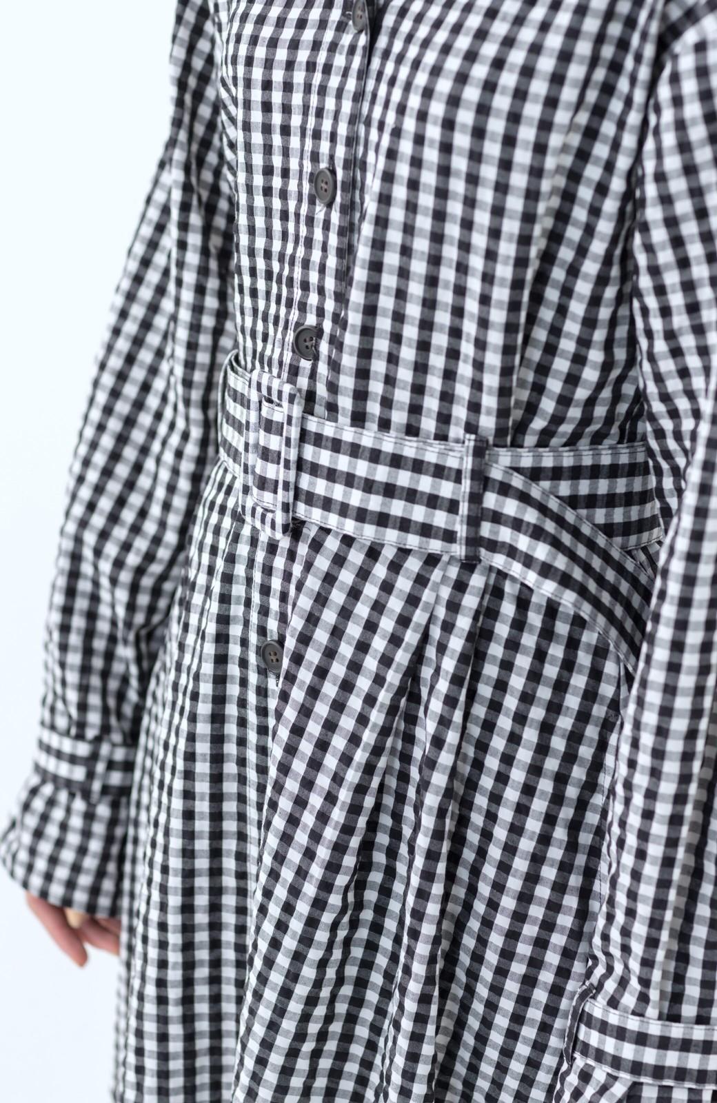 haco! いつものコーデに華やぎを添える ワンピースとしても着られるギンガムライトアウター <ブラック>の商品写真27