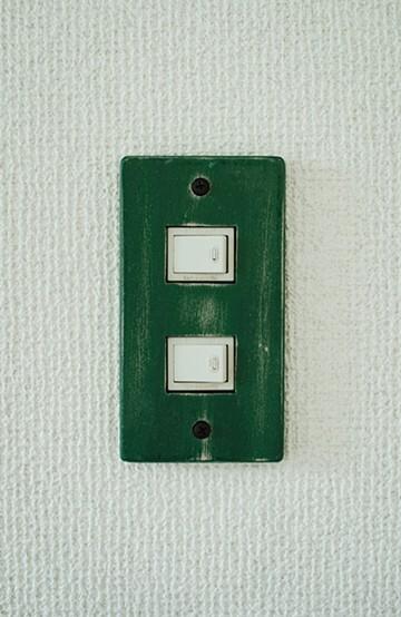 haco! カラースイッチカバー 2穴 <グリーン>の商品写真