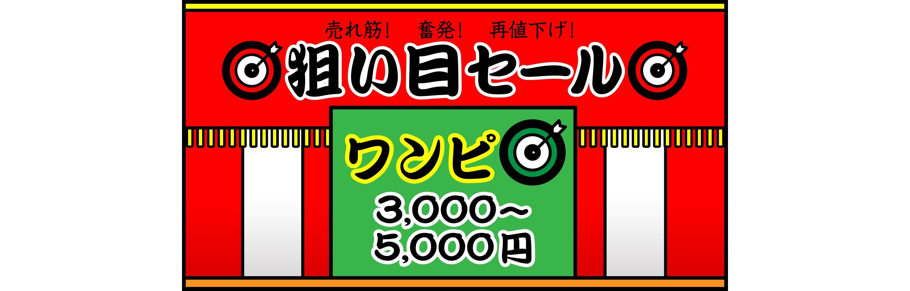 狙い目セール \ワンピ ¥3000~¥5000/
