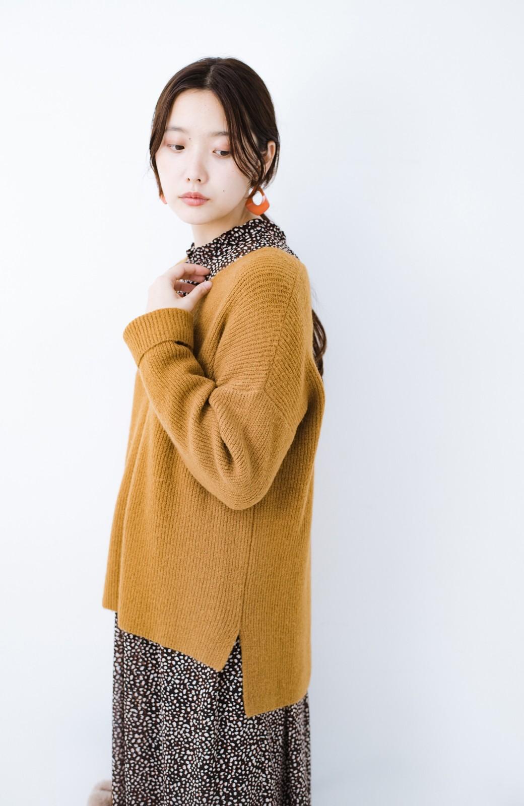 haco!  パッと着てさりげなく女っぽい 便利なシンプルVネックニット <キャメル>の商品写真7