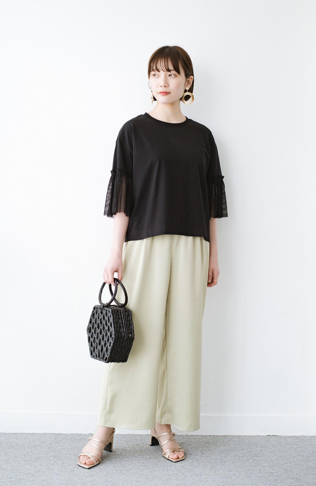 haco! ほんのり透けるストライプ袖が女っぽい 異素材カットソートップス <ブラック>の商品写真7